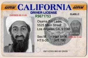license-thumb